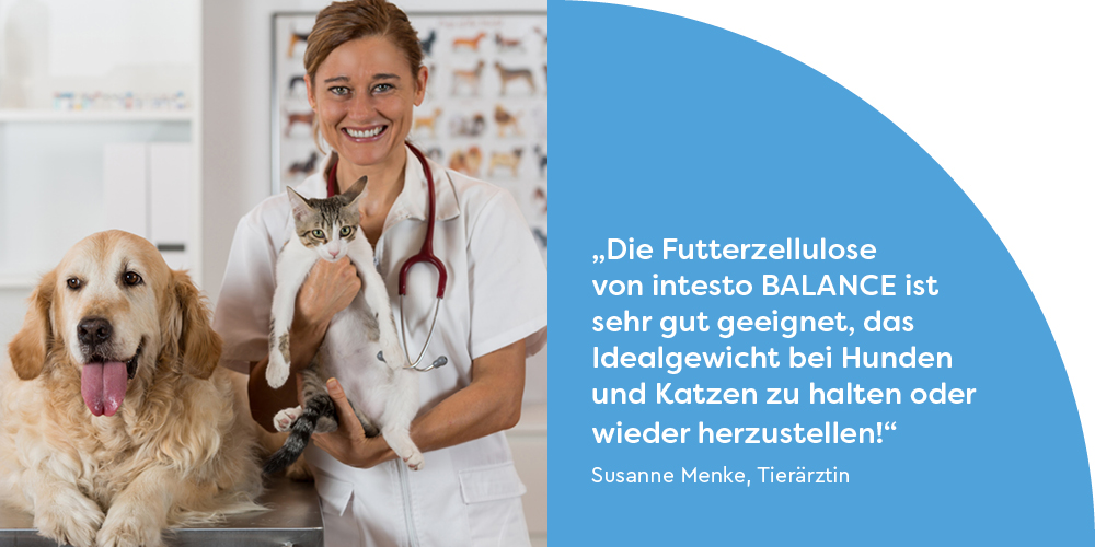 Futterzellulose-Tierärzte-Hunde-Katzen