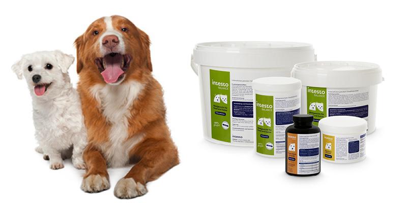 Futterzellulose-Produkte-Hunde